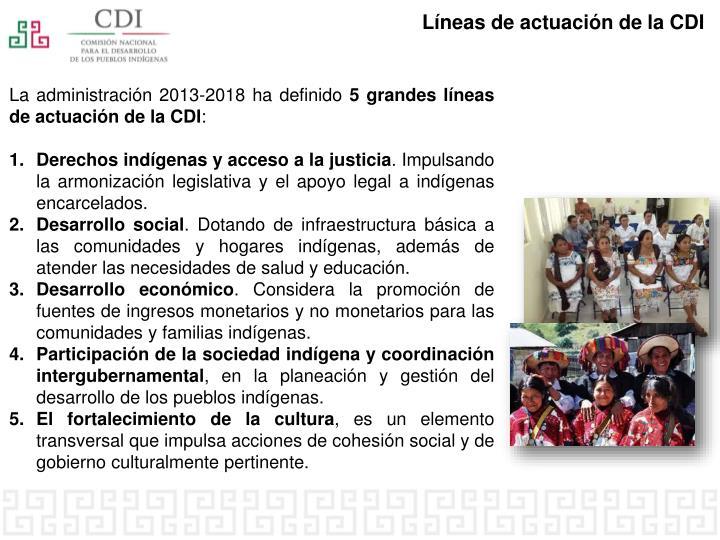 Líneas de actuación de la CDI
