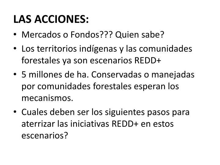 LAS ACCIONES: