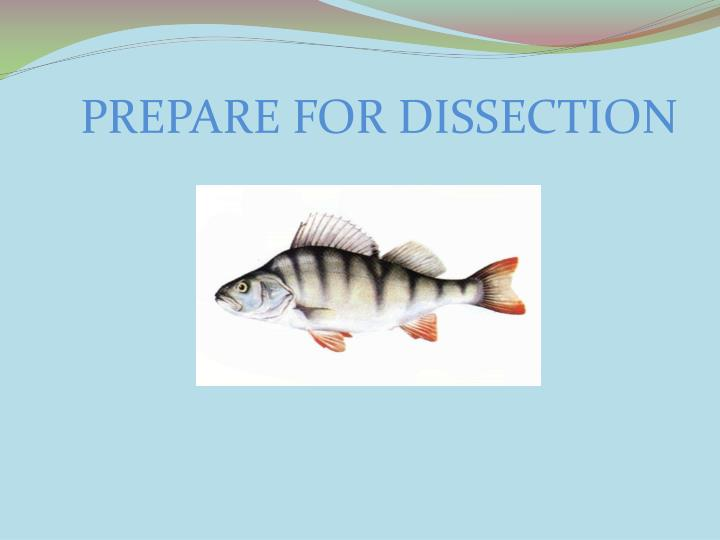 PREPARE FOR DISSECTION