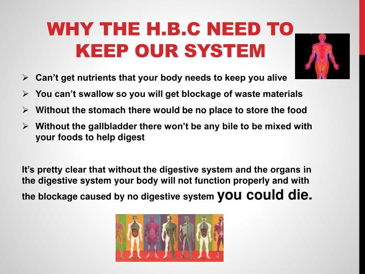 Why the h.b.c need to keep our system