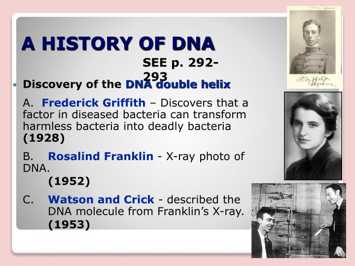 A HISTORY OF DNA