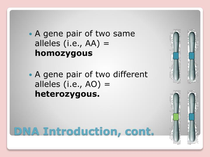 A gene pair of two same alleles (i.e., AA) =