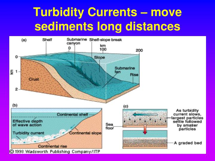 Turbidity Currents – move sediments long distances