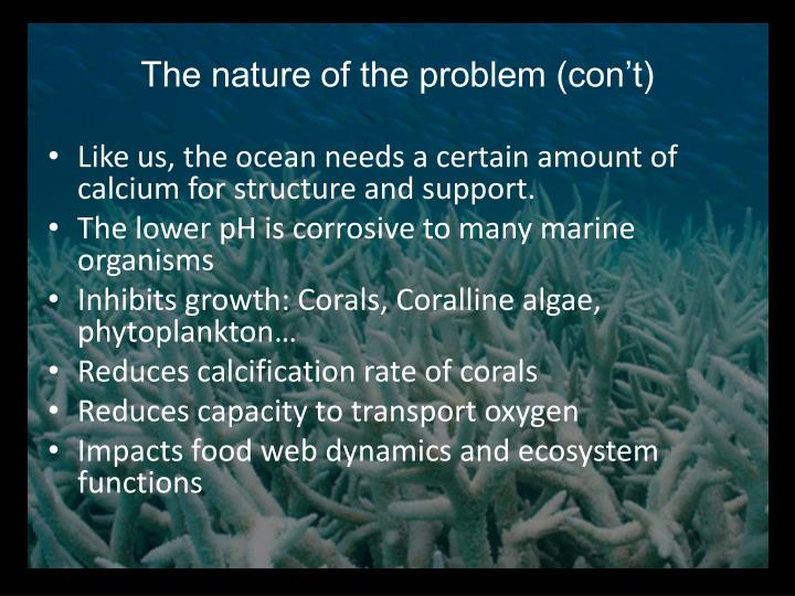 The nature of the problem (con't)