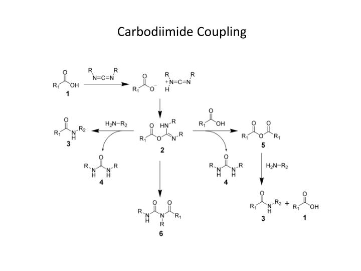 Carbodiimide