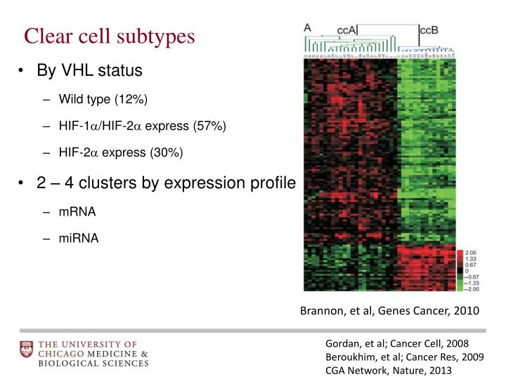 Clear cell subtypes