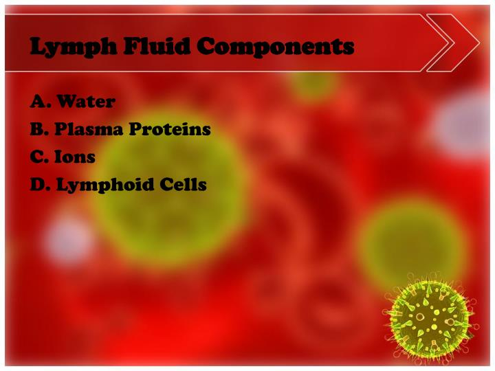Lymph Fluid Components