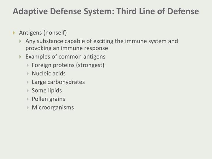 Adaptive Defense System: Third Line of Defense