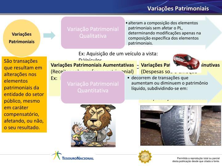 Variação Patrimonial Quantitativa