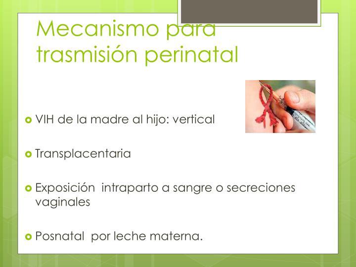 Mecanismo para trasmisión perinatal
