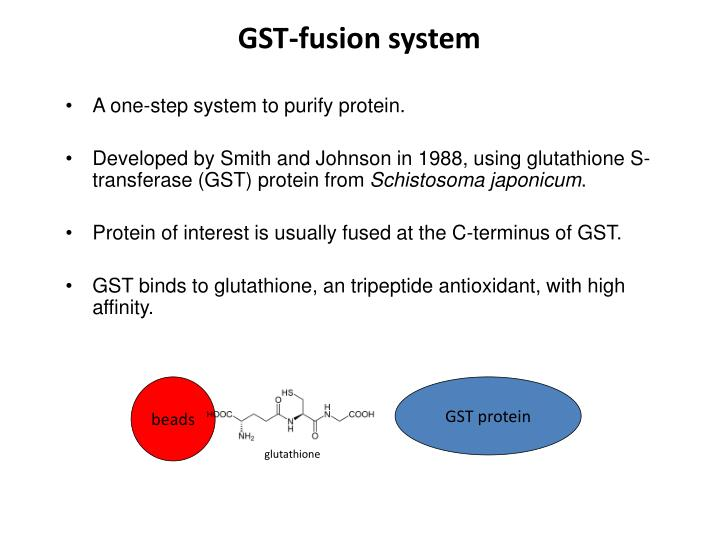 GST-fusion system