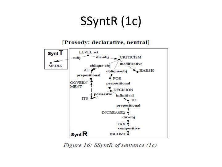 SSyntR