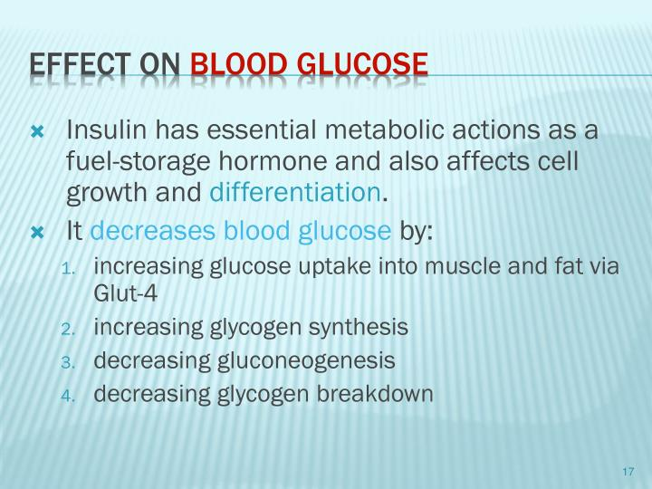 Insulin has essential metabolic actions as a fuel-storage hormone and also affects cell growth and