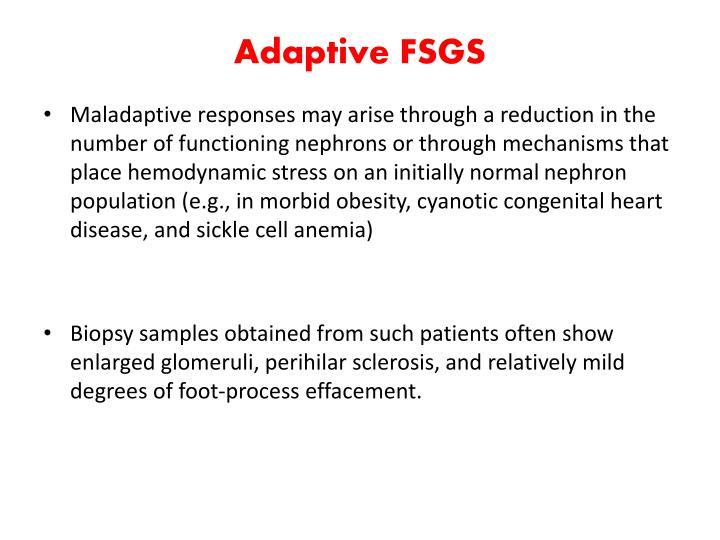 Adaptive FSGS