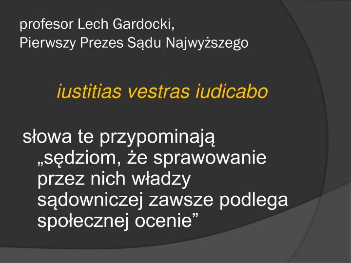 profesor Lech Gardocki,