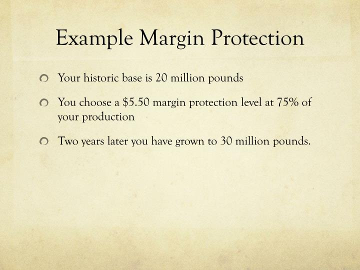 Example Margin Protection
