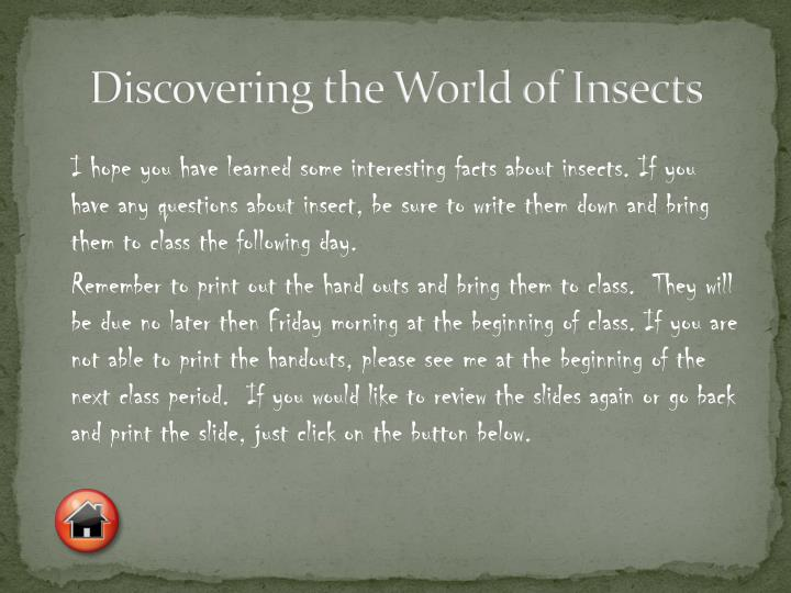 Discovering the World of Insects
