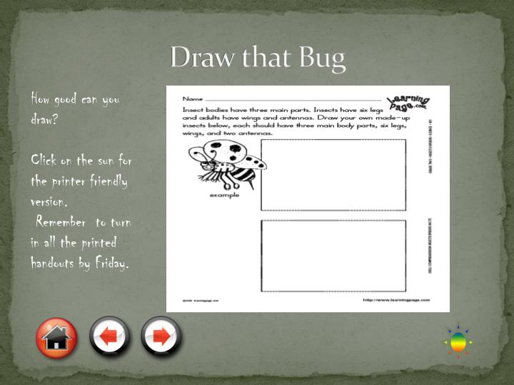 Draw that Bug