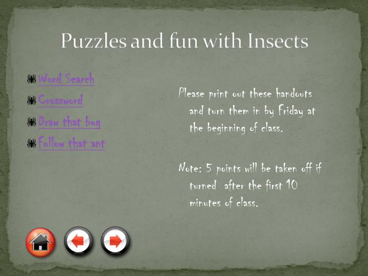 Puzzles and fun with Insects