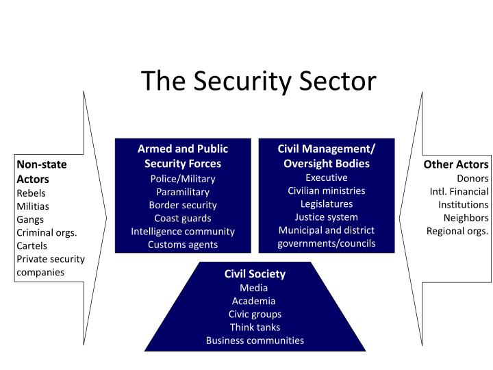 The Security Sector
