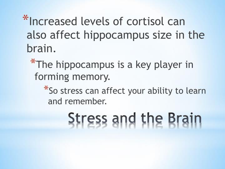 Increased levels of cortisol can also affect hippocampus size in the