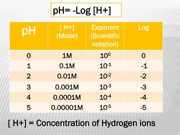 pH= -Log [H+]