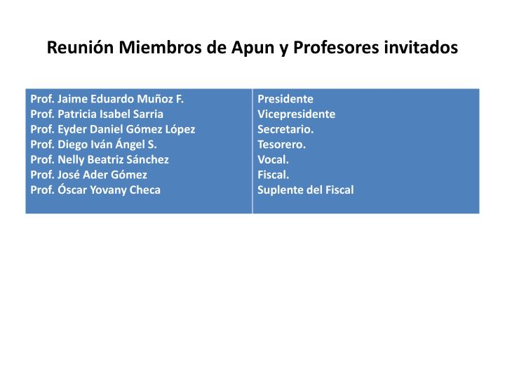 Reunión Miembros de Apun y Profesores invitados