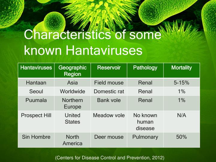 Characteristics of some known Hantaviruses