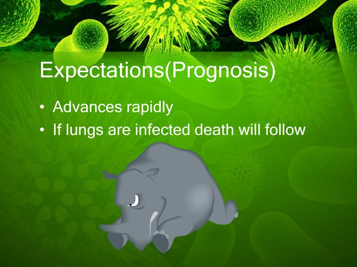 Expectations(Prognosis)