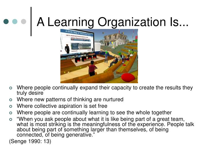 A Learning Organization Is...