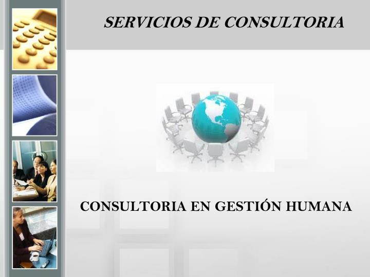 SERVICIOS DE CONSULTORIA
