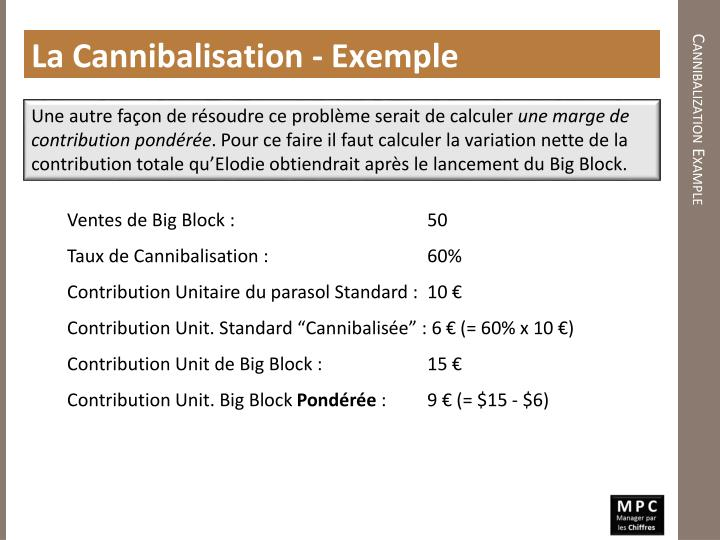La Cannibalisation - Exemple