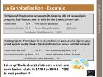 la cannibalisation exemple