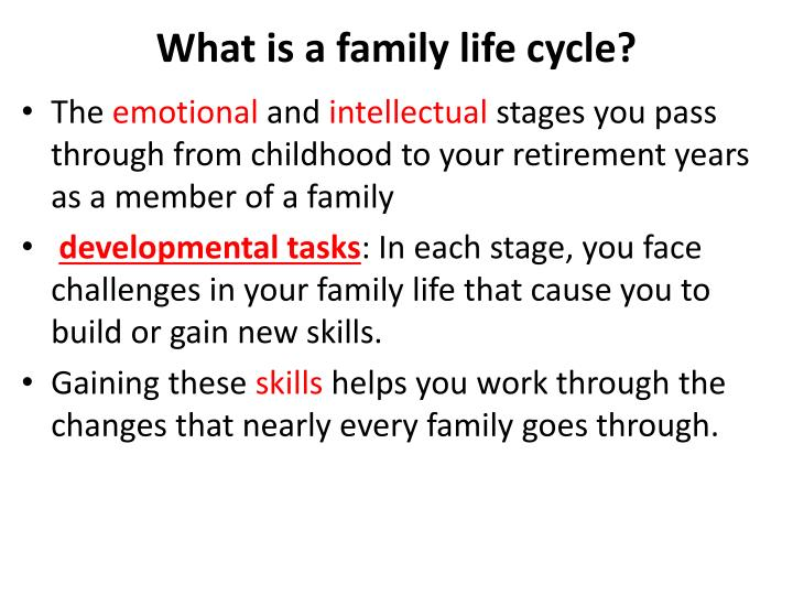 What is a family life cycle?