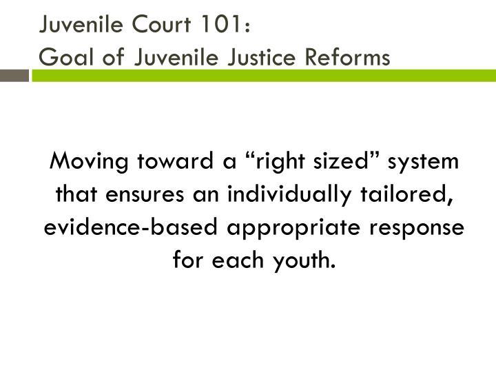 Juvenile Court 101: