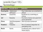 juvenile court 101 terminology
