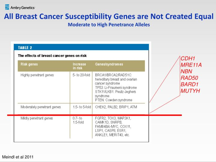 All Breast Cancer Susceptibility Genes are Not Created Equal