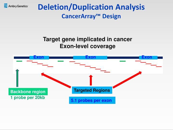 Deletion/Duplication Analysis