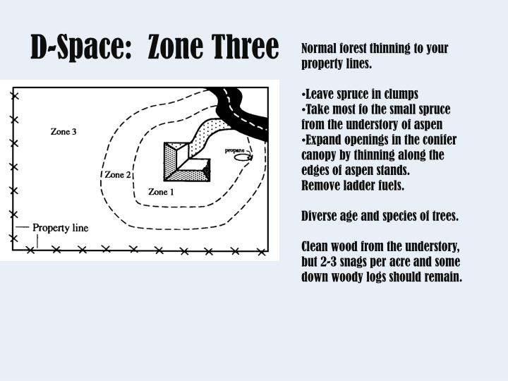 D-Space:  Zone Three