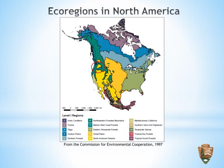 Ecoregions in North America