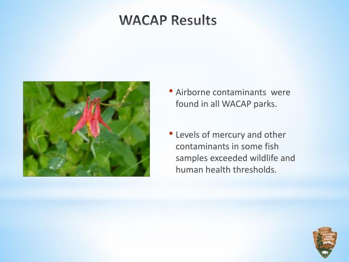 Airborne contaminants  were found in all WACAP parks.