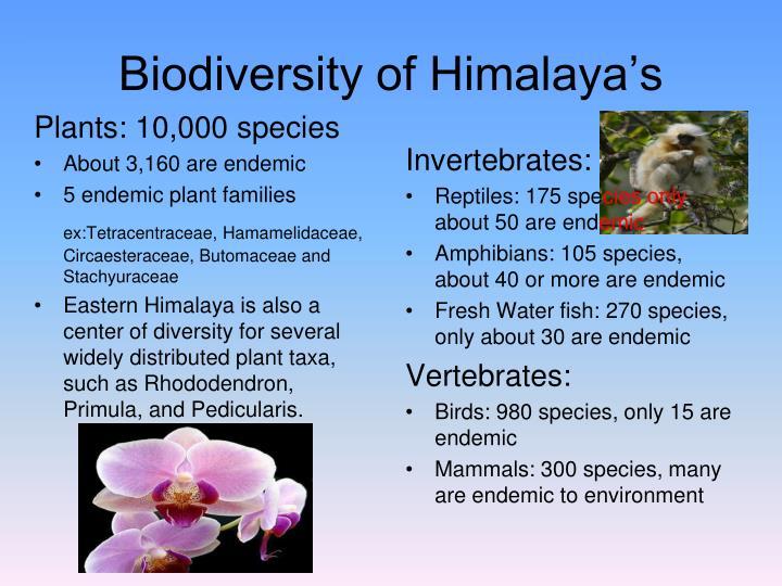 Biodiversity of Himalaya's