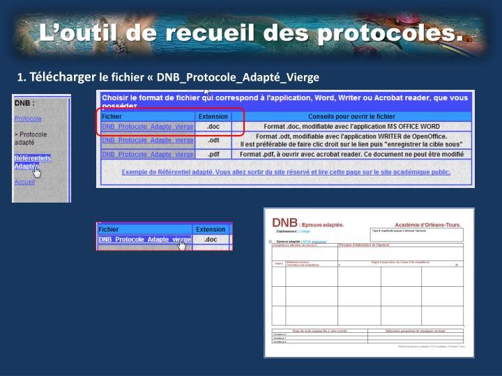 L'outil de recueil des protocoles.