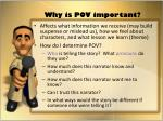 why is pov important