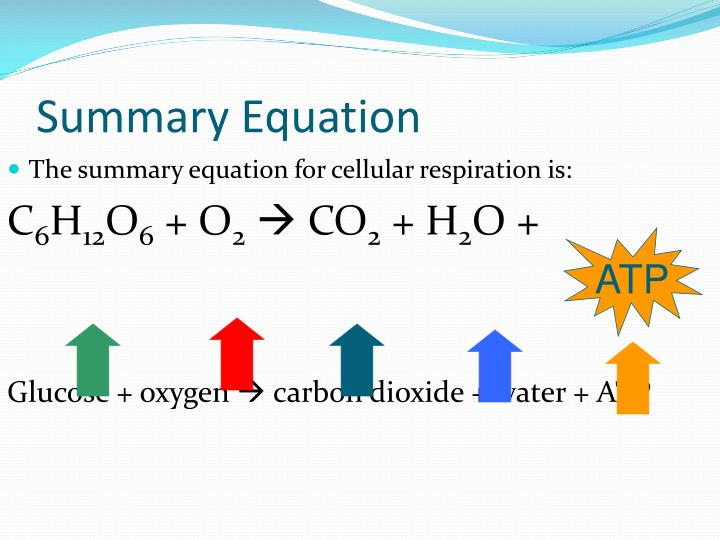 Summary Equation
