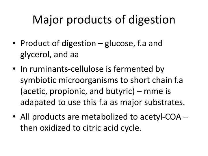Major products of digestion