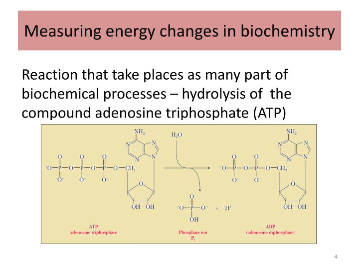 Measuring energy changes in biochemistry