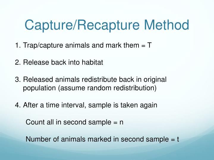 Capture/Recapture Method