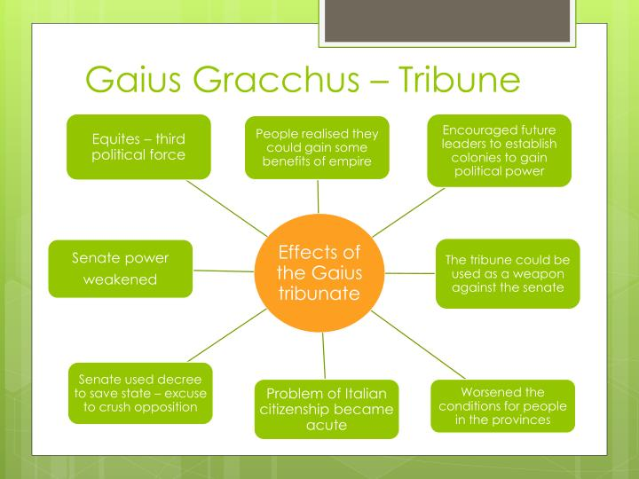 an analysis of the brother of gaius gracchus Tiberius and gaius gracchus's existence echo throughout history as a result of   with a descriptive analysis of tiberius gracchus's background and character   and that his brother gaius was 9 years younger than him (plutarch 145-147.