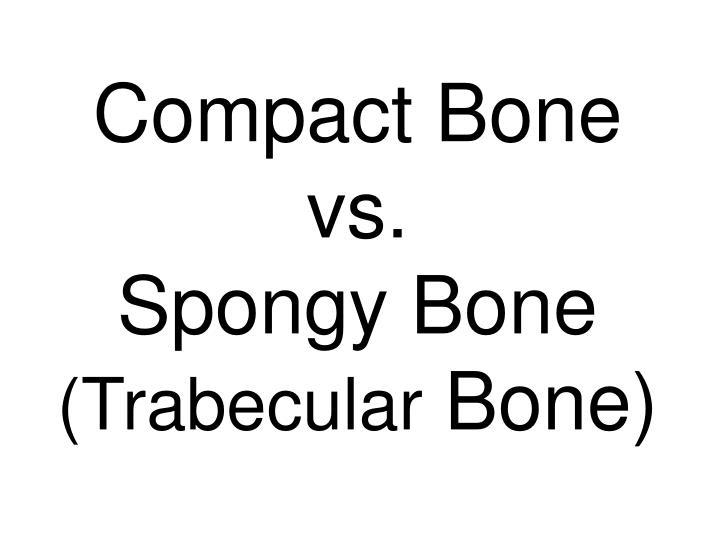 Compact Bone vs.